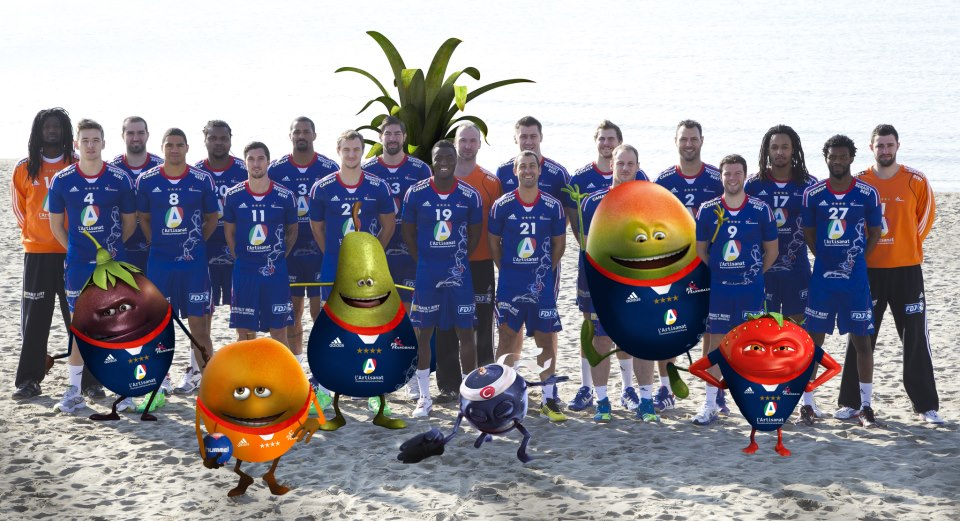 oasis fédération française de handball sponsoring